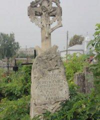 Cmentarz w Stryju